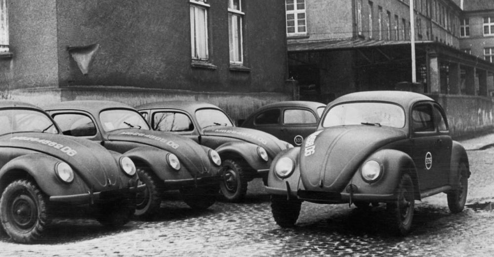 Первые жуки